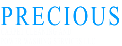 Precious Carpet Cleaning and Power Washing Services LLC